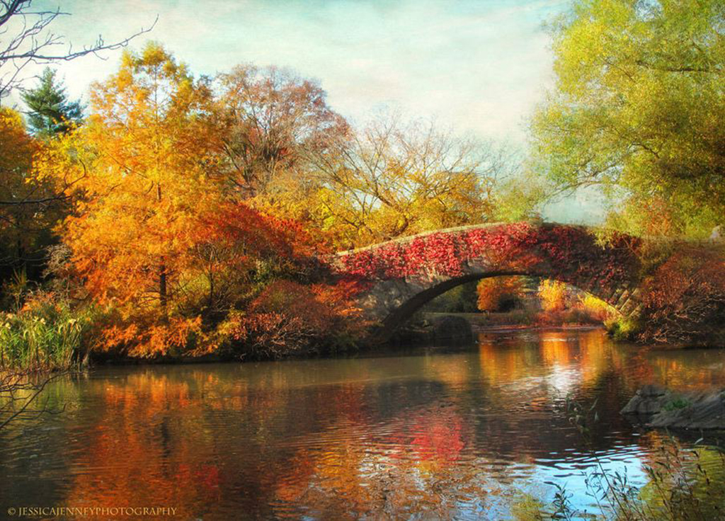 Jessica-Jenney--Gapstow-Bridge-in-Autumn.jpg