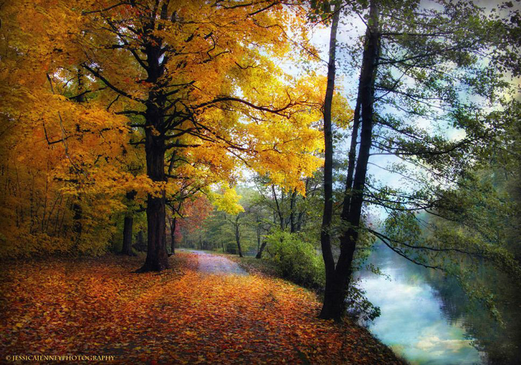 Jessica-Jenney-.Autumn-River-View..jpg