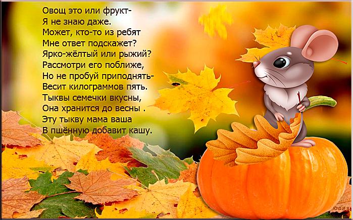 150128378_1__6_.jpg
