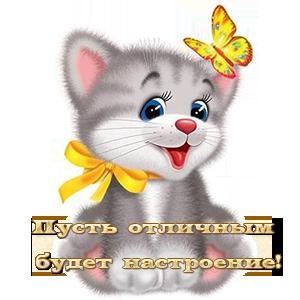 DLY-DRUZEI_1.png