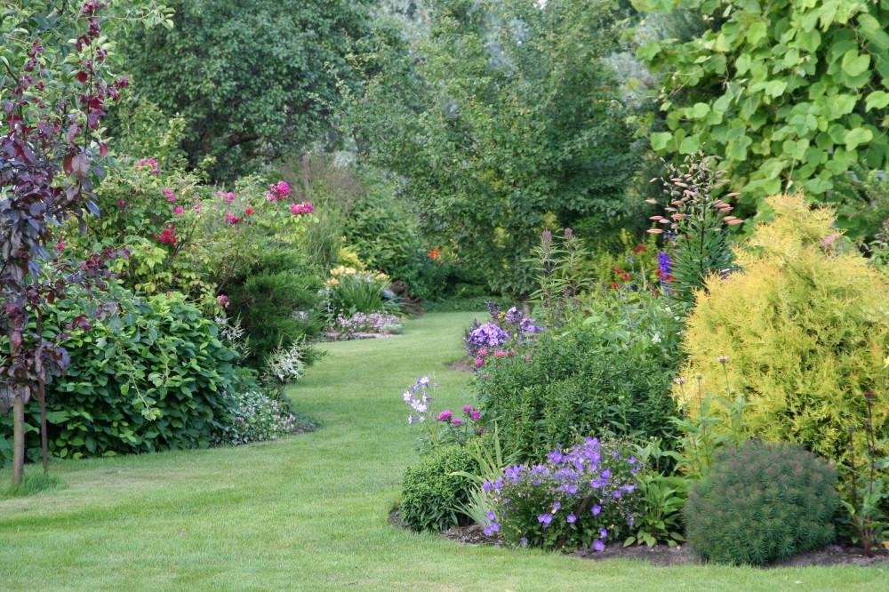 Maies-Garden4_.jpg