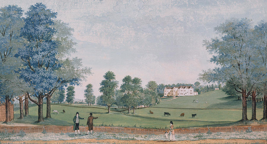 the-great-house-and-park-at-chawton-adam-callander.jpg