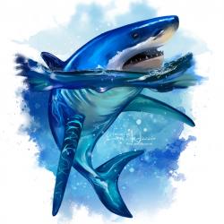 KAJENNA-SHARK.th.png