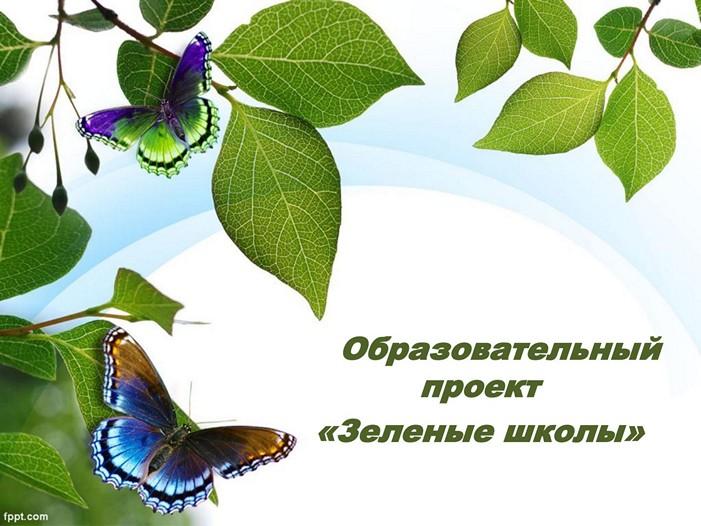 Зеленые школы 01