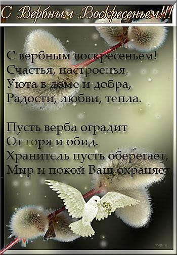 BEZ-IMENI-1fb0968091223e371.jpg